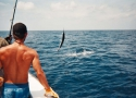 Swordfish Fishing Destin Florida
